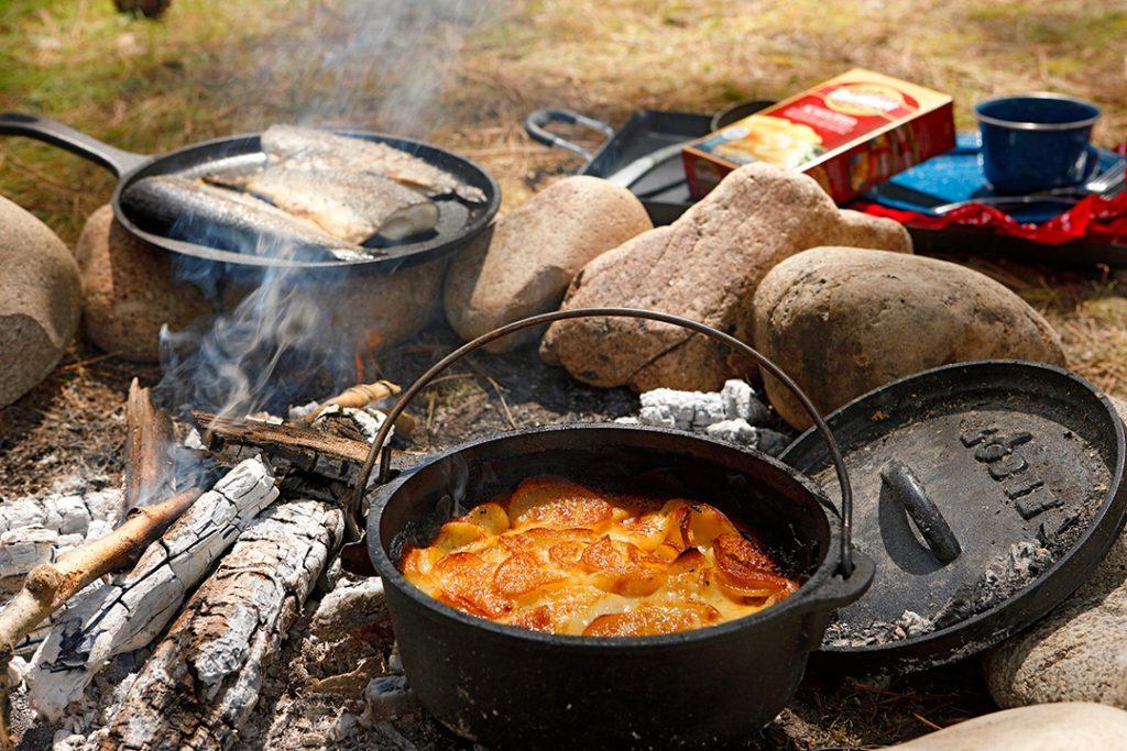 طبخ غذا در طبیعت با آتش و هیزم