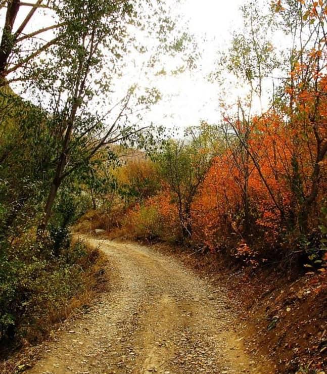 طبیعت گردی در روستای شهرستانک
